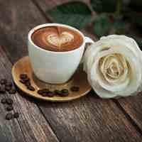 经期可以喝咖啡吗