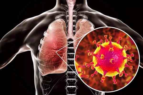 武汉新型冠状病毒传播途径