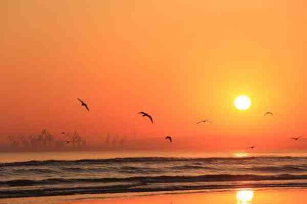 出太阳对新型冠状病毒有好处吗