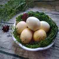 为什么三月三必须用荠菜煮蛋