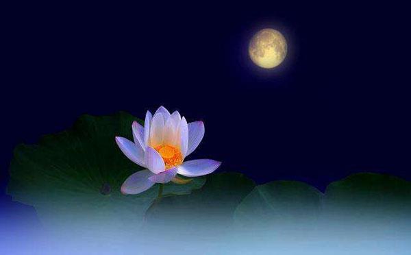 中秋节赏月寓意着什么,中秋节赏月的寓意简短-第2张图片-免单网