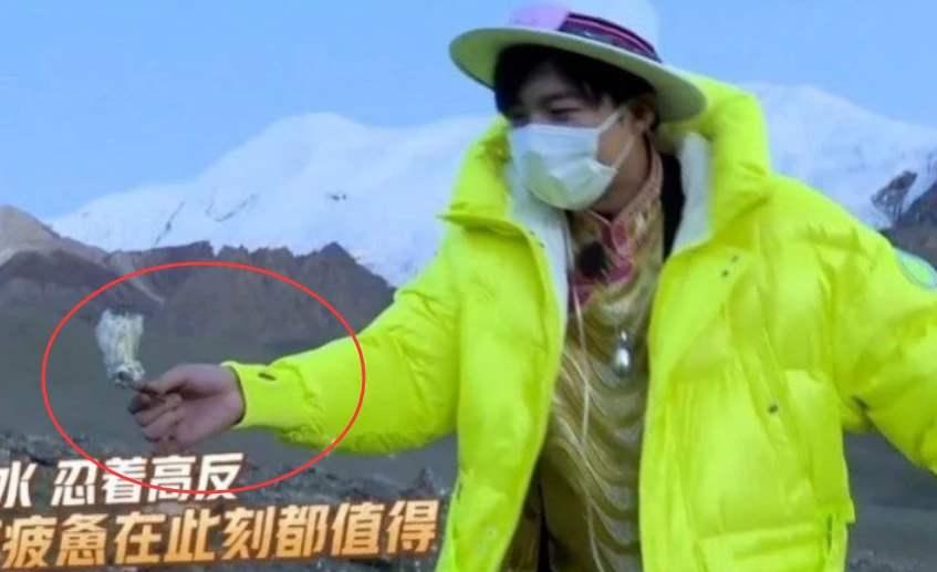 刘宇宁就采摘雪莲花一事道歉,刘宇宁道歉
