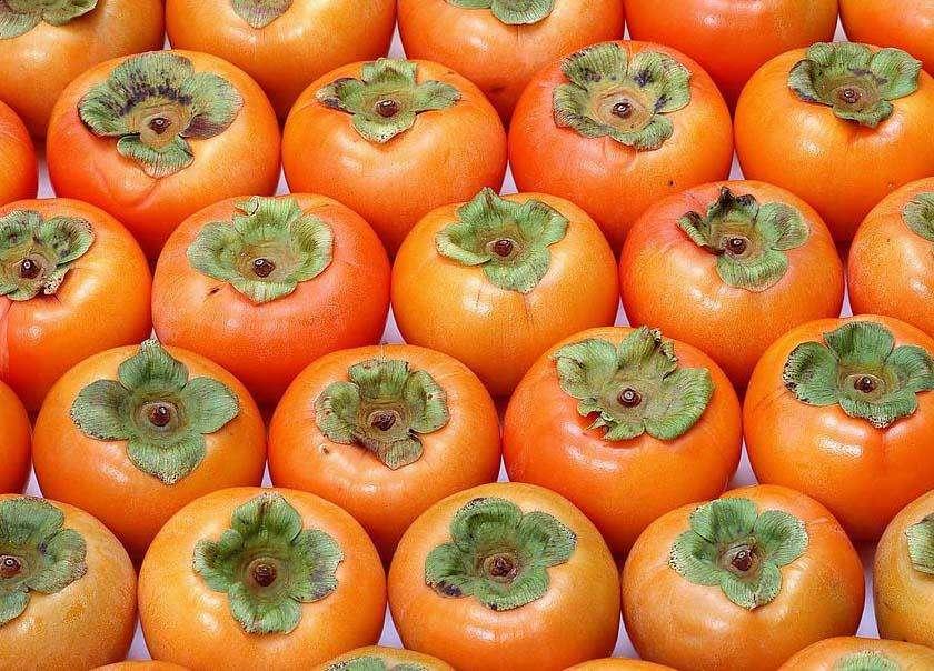 寒露吃柿子的寓意,寒露吃柿子什么意思-第1张图片-免单网