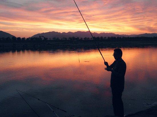 深秋晚上钓鱼深水还是浅水,深秋晚上钓鱼没有口怎么办-第3张图片-免单网