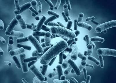 每日优鲜一款产品大肠菌群超标