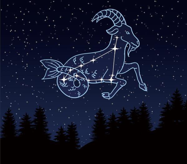 2020年12月份是什么星座,2020年12月星座运势完整版-第2张图片-免单网