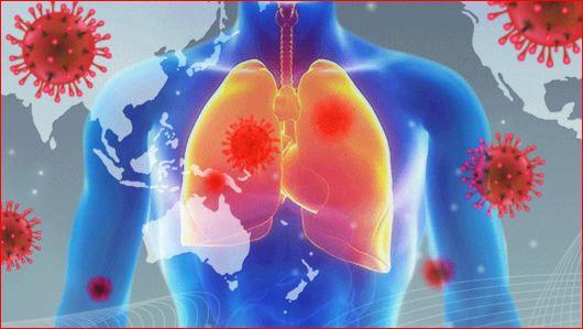 张文宏称新冠已成为常驻病毒,新冠病毒长期与人类共存-第1张图片-免单网