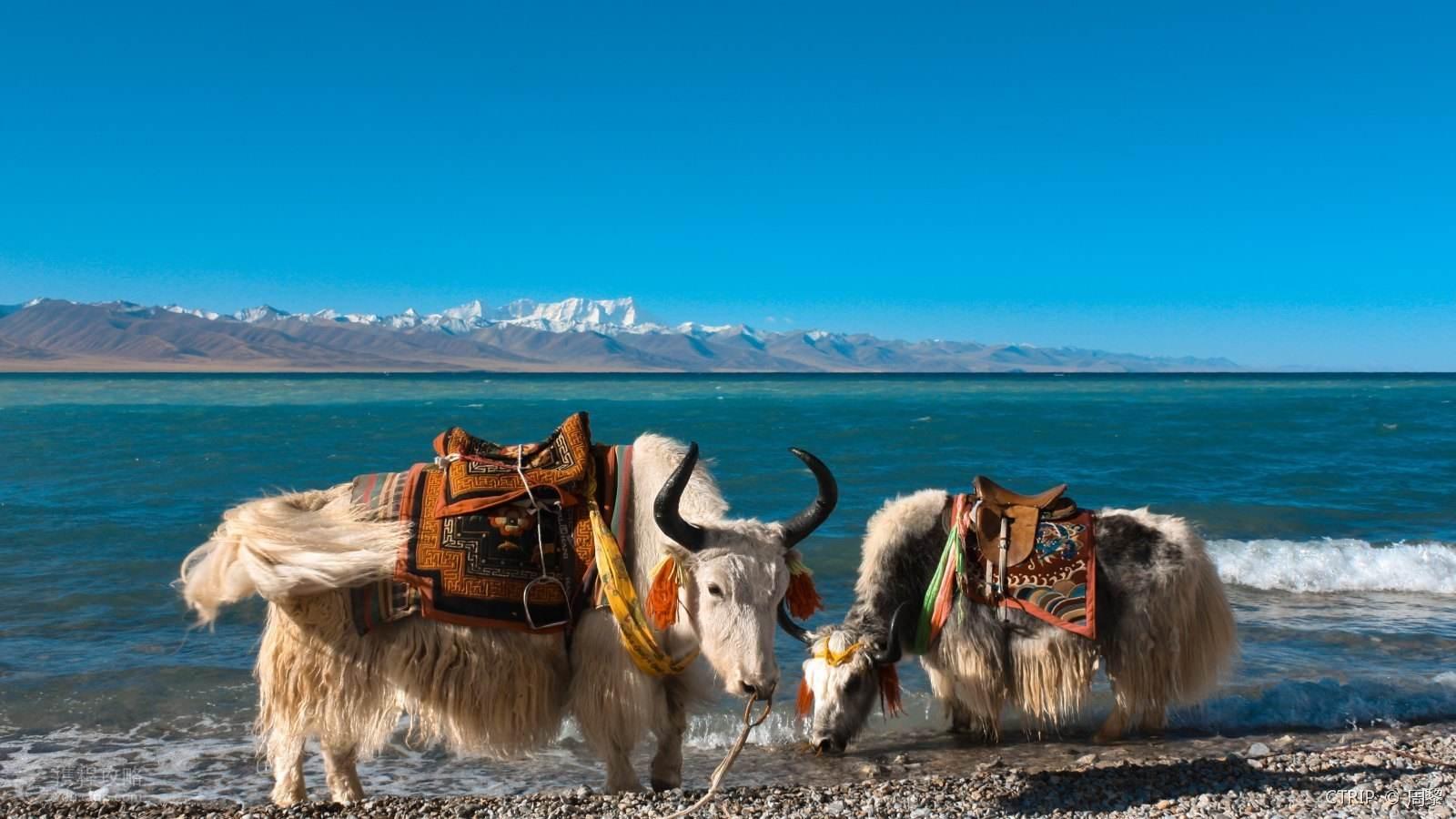 第一次去西藏要注意什么,第一次进藏要准备什么