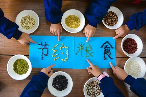 世界粮食日是几月几号,世界粮食日是什么时候  第3张
