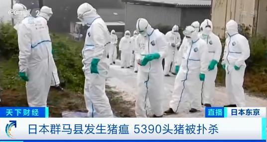 日本已扑杀生猪17万头