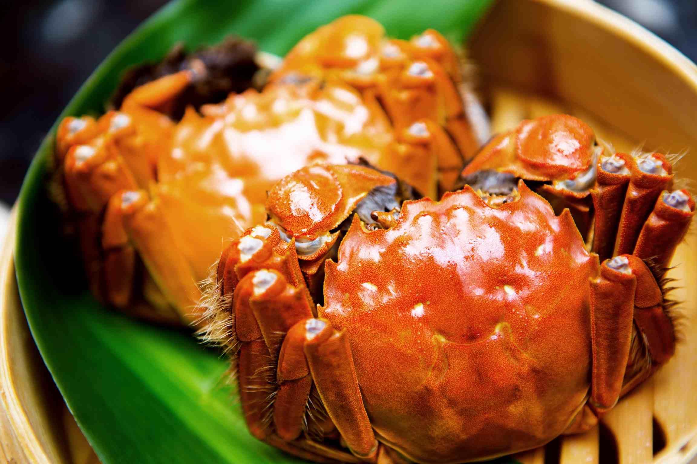 中秋节吃螃蟹公的好还是母的好,中秋节吃螃蟹有什么寓意  第3张