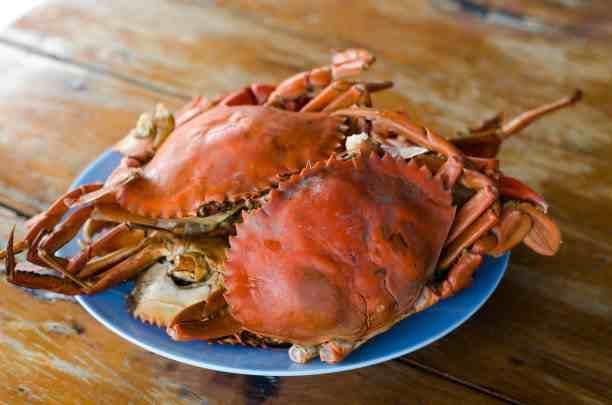 死螃蟹怎么处理才能吃,死螃蟹还能吃吗刚死的螃蟹-第1张图片-免单网