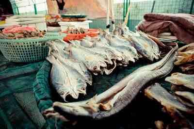 商贩给鱼泼不明液体当野生鱼卖