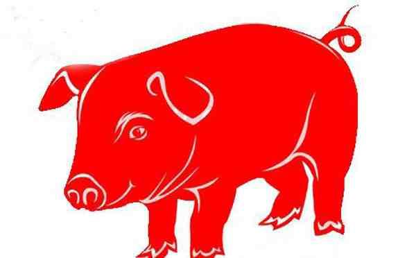 2020年11月属猪运势