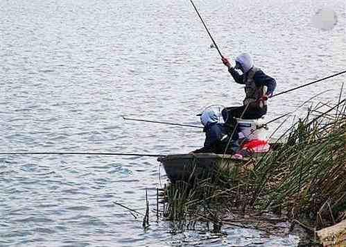 上百人清晨百米冲刺抢钓鱼位