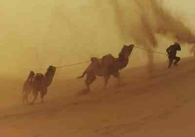 朝鲜担心沙尘暴携带病毒,沙尘暴会传播病毒吗  第3张