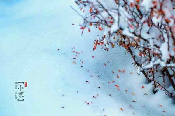小寒是什么意思呢,大寒下面是什么节气