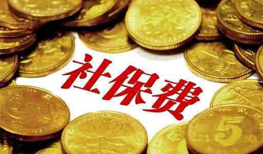 企业社保费交由税务部门征收