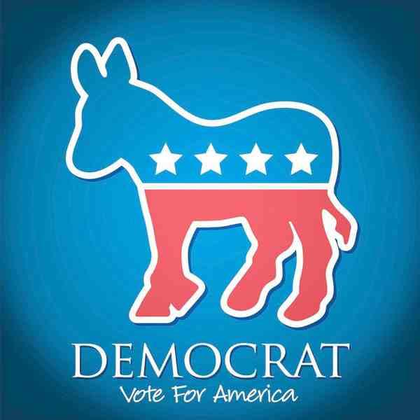 美国民主党获众议院多数席位,