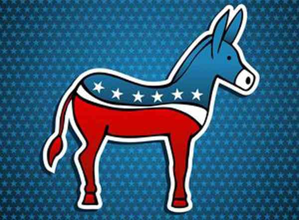 民主党得到众议院多数席位,