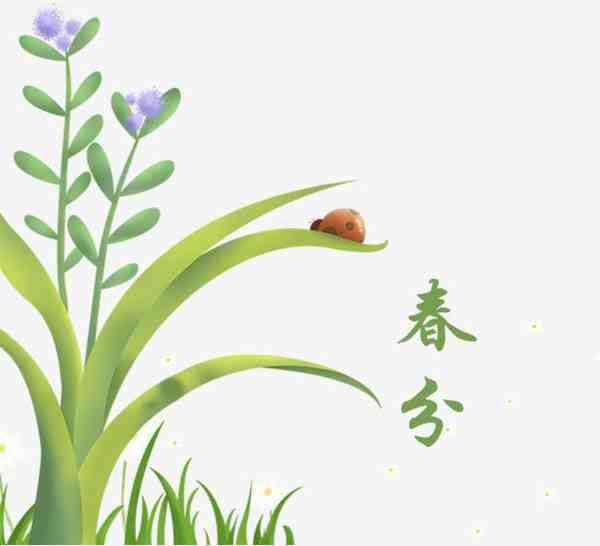 春分养生食物有哪些,春分养生10款食谱滋