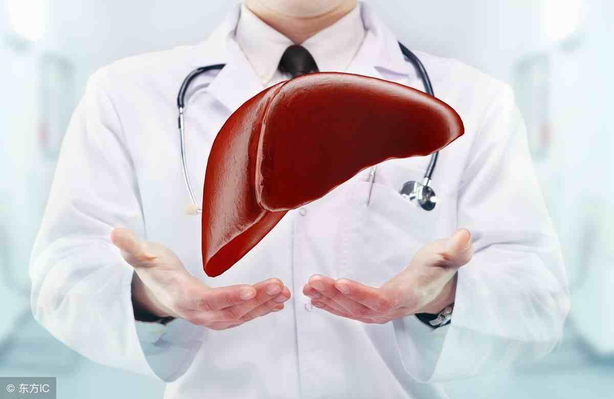 脂肪肝应该如何治疗?谨记这5点,对症治疗更有效