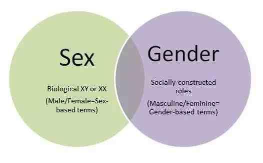gender和sex有什么区别?