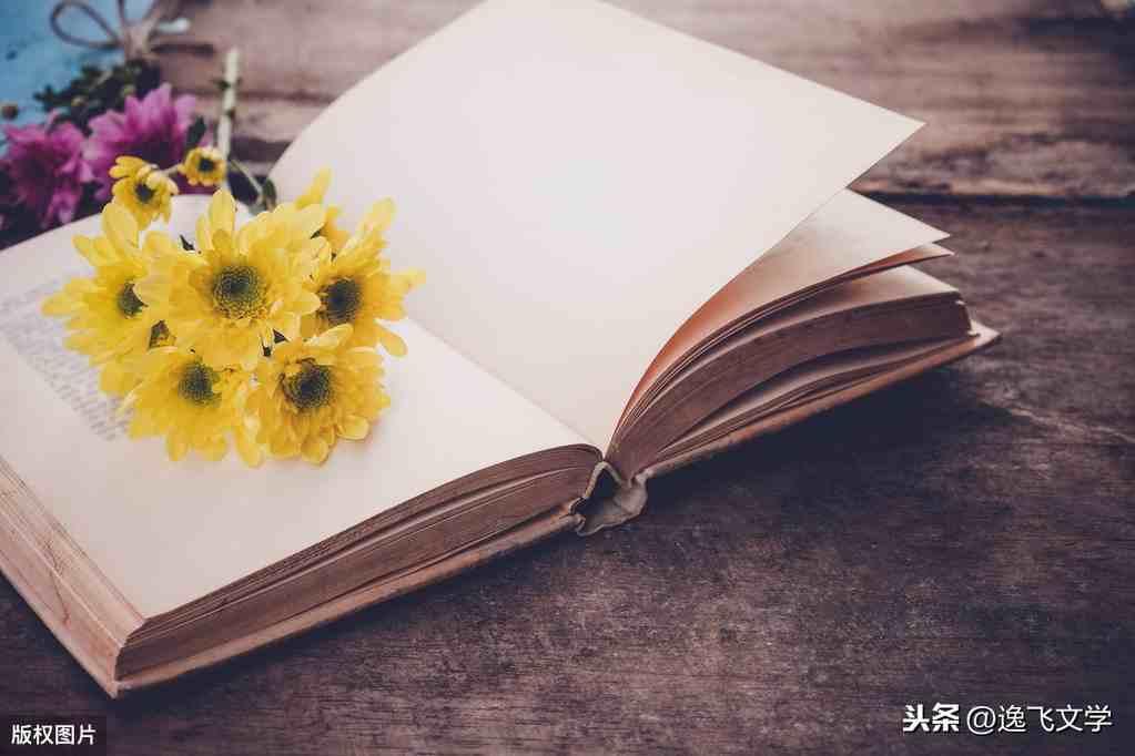 [散文] 小说《羊脂球》读后感