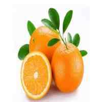 脐橙上火吗(吃脐橙的注意事项是什么)
