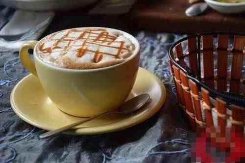 烤奶和奶茶本质上究竟有什么区别?