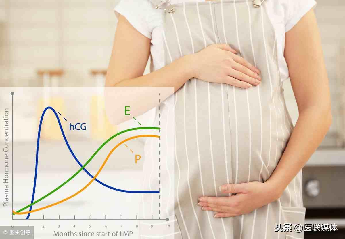 hcg是什么意思(孕酮和HCG是什么意思?)