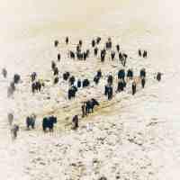 有世界屋脊之称的是什么地方(中国最神奇的地方,被称为世界屋脊)