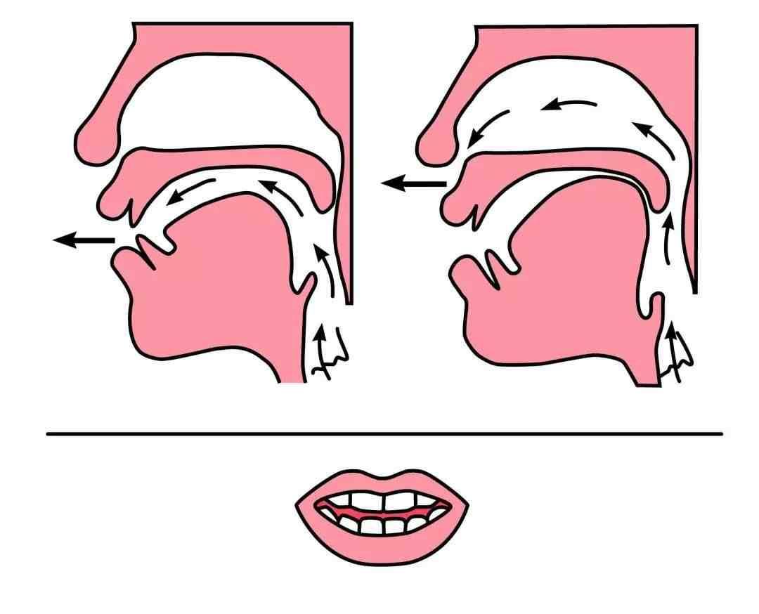 如何区分拼音中前鼻音和后鼻音的发音