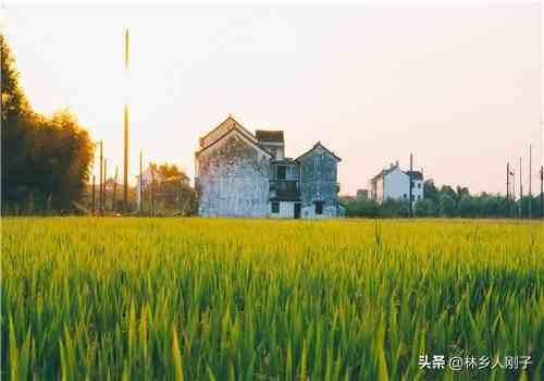 农村一亩地等于多少平方米?简单换算方法,你会了吗?