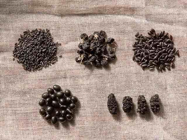 中国最好的黑豆产地