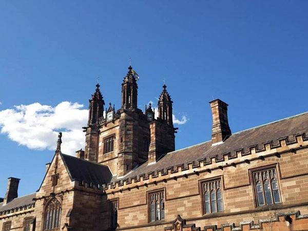 象牙塔什么意思 活在象牙塔是什么意思 为什么把大学比喻成象牙塔
