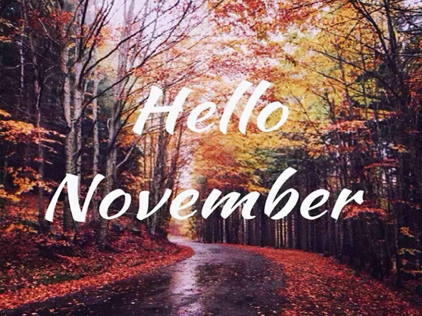 10月再见,11月你好朋友圈说说 2020十一月你好唯美句子
