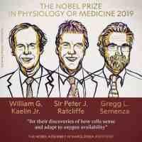 诺贝尔奖金是多少钱(诺贝尔奖金额到底是什么水平?)