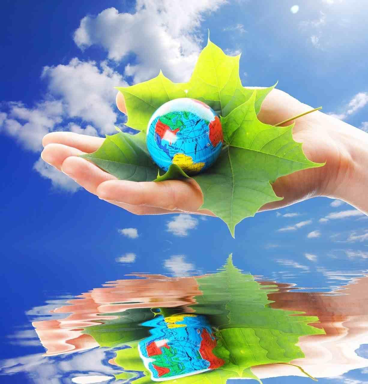 小学高年级环保作文2篇:保护环境,爱护家园