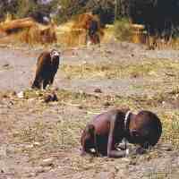 饥饿的苏丹(饥饿的苏丹女孩长大了)