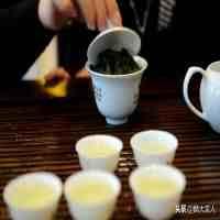 """乌龙茶是什么茶(""""乌龙茶""""和""""铁观音""""有啥区别?)"""