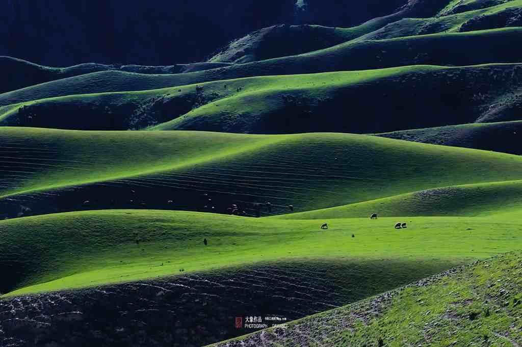 新疆旅游攻略:伊犁哪些地方最值得一去?必须是这八大景区!