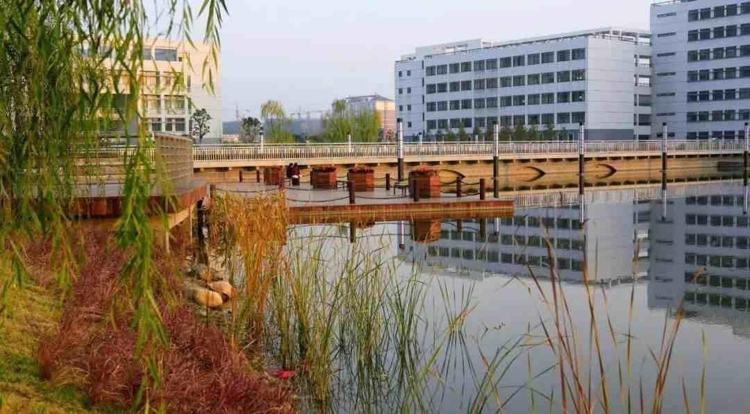 安徽财经大学是几本(安徽财经大学) 投稿 第8张