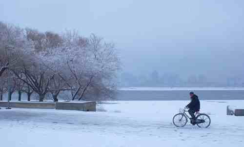描写冬天景色的作文(10篇关于冬天来了的作文) 投稿 第2张