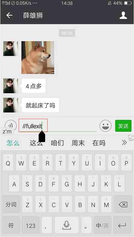 一串代码微信自动退出,网友炸开了锅:出故障了?