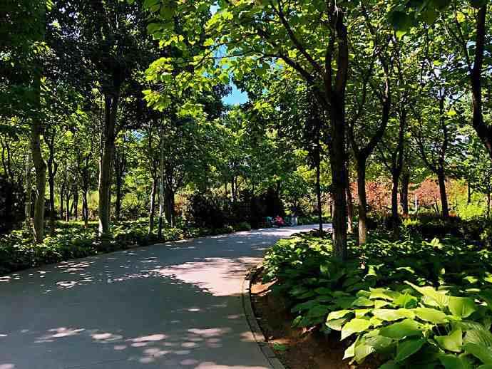 城市周边游 | 石家庄秀水公园:绿意盎然 花开烂漫