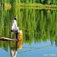 雨前钓鱼!(夏季钓鱼有什么好方法! )