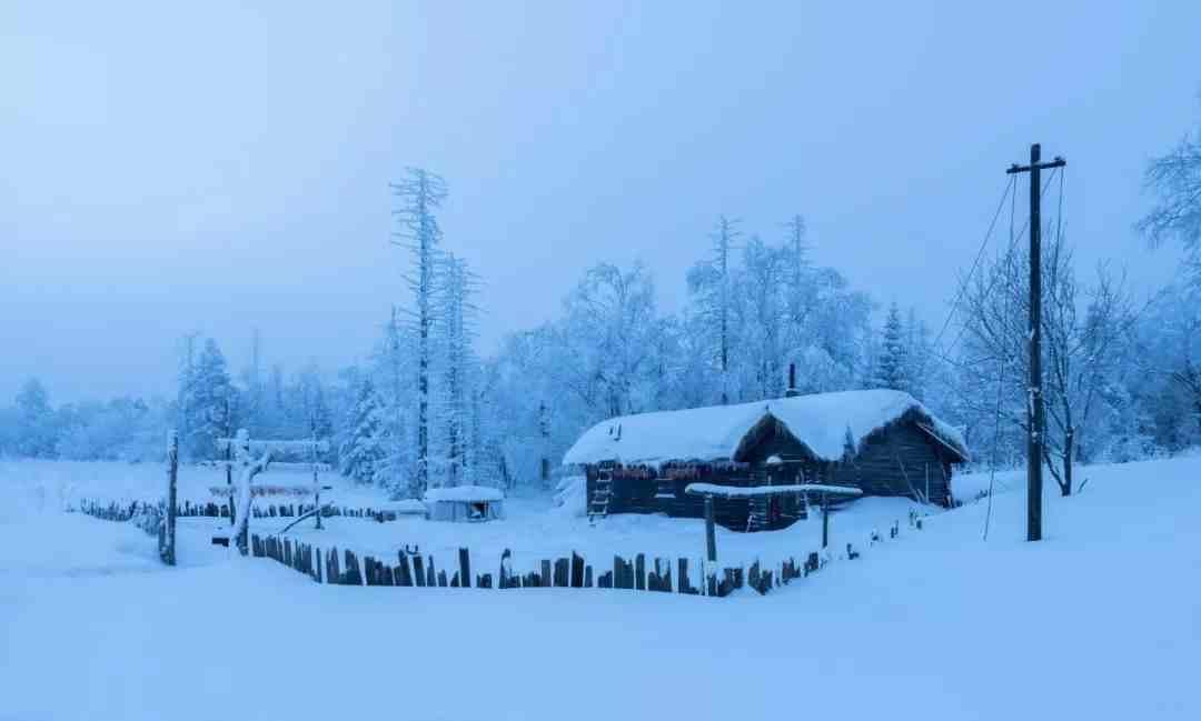 关于雪的诗词(关于雪的20句诗词)