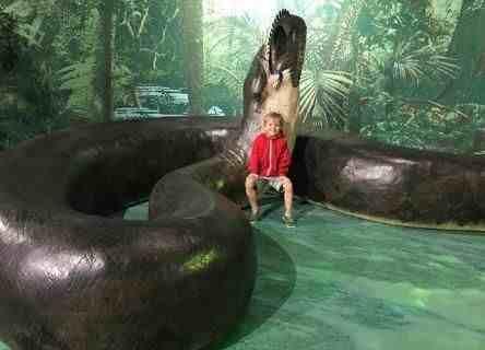 最大蟒蛇(历史上最大的蟒蛇)