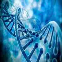 纳米技术是什么?(它的用途在哪里?)